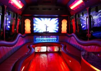 14 Passenger Party Bus