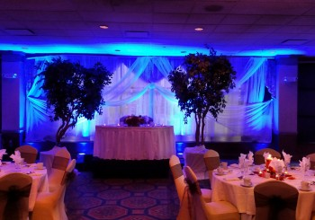 Wedding Decor Uplighting